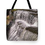 Water Levels Tote Bag