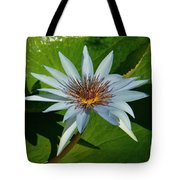 Water Lile Tote Bag