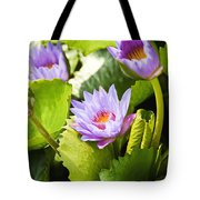 Water Lilies Tote Bag by Ray Laskowitz - Printscapes
