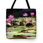 Water Lilies Tam Coc  Tote Bag