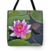 Water Lilly  And Lilly Pads Tote Bag