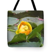 Water Lilly Tote Bag by Diane Greco-Lesser