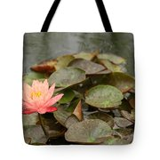 Water Lilly In Summer Tote Bag