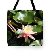 Water Lilly With Dragonfly Tote Bag