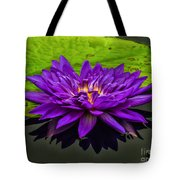 Water Lily 15-2 Tote Bag
