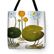 Water Lily, 1613 Tote Bag