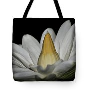 water lily 25 White Night Blooming Water Lily I Tote Bag