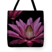 water lily 27 Dark Pink Night Blooming Water Lily Tote Bag