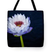 Water Lily #3 Tote Bag