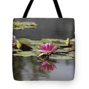 Water Lily 3 Tote Bag