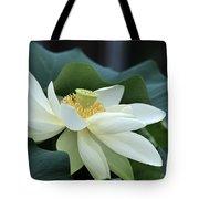 water lily 34 Yellow Lotus I Tote Bag