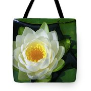 Water Lily 3437 Tote Bag