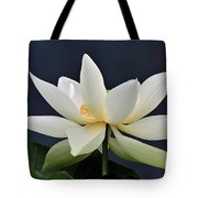 Water Lily 36 Tote Bag