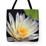 water lily 48 Green Smoke Tote Bag