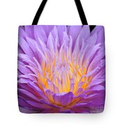 water lily 55 Ultraviolet Tote Bag