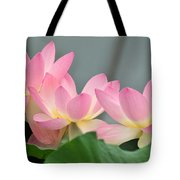 water lily 57 Pink Lotus Tote Bag