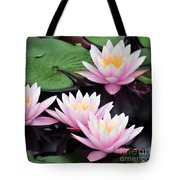 water lily 91 Sunny Pink Water Lily Tote Bag