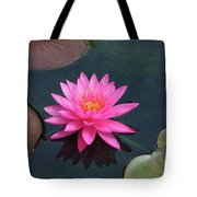 Water Lily - Afternoon Delight Tote Bag