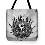 Water Lily B/w Tote Bag