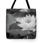 Water Lily - Burnin' Love 13 - Bw Tote Bag
