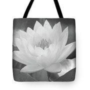 Water Lily - Burnin' Love 15 - Bw - Water Paper Tote Bag