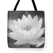 Water Lily - Burnin' Love 16 - Bw - Water Paper Tote Bag