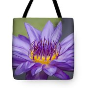 Water Lily Director George T Moore Tote Bag