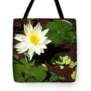 Water Lily From Private Garden Tote Bag