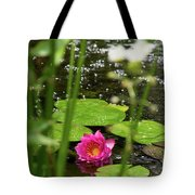 Water Lily In A Pond Tote Bag