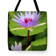 Water Lily In A Tropical Garden_4657 Tote Bag