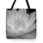 Water Lily In Black And White Tote Bag