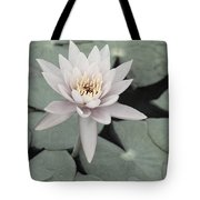 Water Lily In Soft Pink Tote Bag