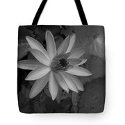 Water Lily Monochrome Tote Bag