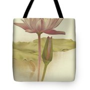 Water Lily  Nymphaea Zanzibarensis Tote Bag