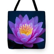 Water Lily Of The Dawn Tote Bag