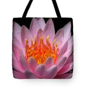Water Lily On Fire Tote Bag