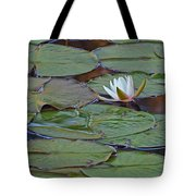 Water Lily Scene Tote Bag