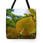 Water Lily Sky Tote Bag