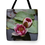 Water Lily With Bee Tote Bag