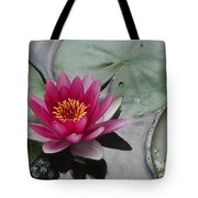 Water Lily With Bubbles Tote Bag