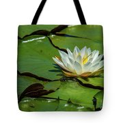 Water Lily With Friend Tote Bag