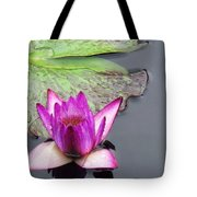 Water Lily With Rain Drops Tote Bag