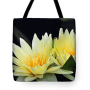 Water Lily Yellow Nymphaea Tote Bag