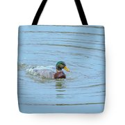 Water Off A Ducks Back Tote Bag