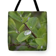 Water Or Silicone Tote Bag