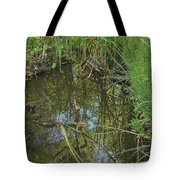 Water Pond Reflection In Peters Canyon Tote Bag