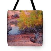 Magic Puddle At Canyon Lands Tote Bag
