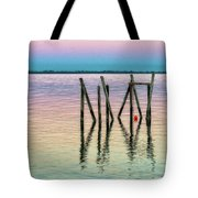 Water Reflections 2017 Tote Bag
