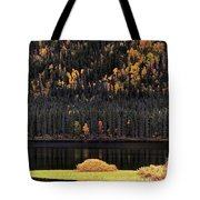 Water Reflections In Autumn Tote Bag