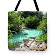 Water Shallows Tote Bag